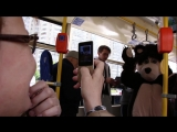 Медведь и русская красавица пригласили пассажиров троллейбусов в Приморском районе на Фестиваль