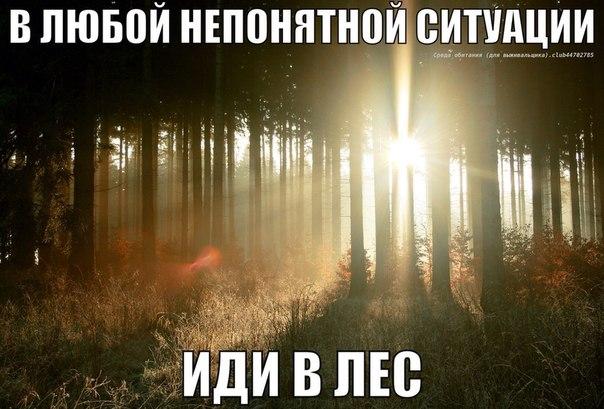 http://cs619422.vk.me/v619422307/24e7/RhSflI1Qmco.jpg