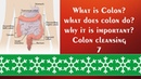 Education / colon cleansing 7/ colon cleanse drink / Saving life Tips / food supplement /
