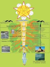 Схема III.  Древо жизни крона.  Олимпийские боги , герои, л ди.