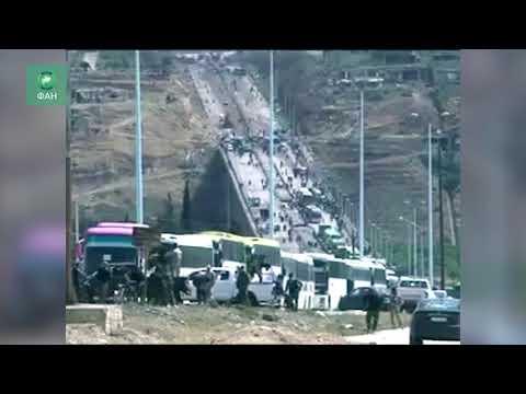 Сирия очищает Растанский котел: автобусный конвой торопится забрать боевиков из Хомса — видео ФАН