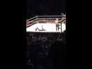 Jeff Hardy vs Randy Orton vs Shinsuke Nakamura U.S. Title Match WWE Live Albany