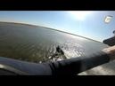 Раскатываем новый спот. Море флэта, глубина макс по пояс, на берегу скважина с чистой водой.