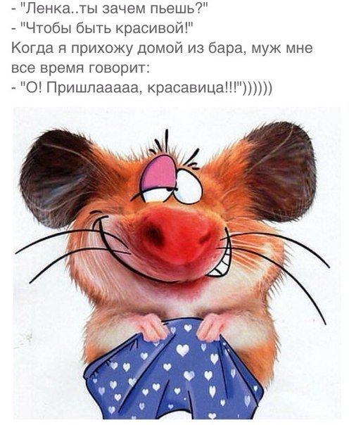 https://pp.vk.me/c543104/v543104722/2945e/tTl_Vgs1rWE.jpg