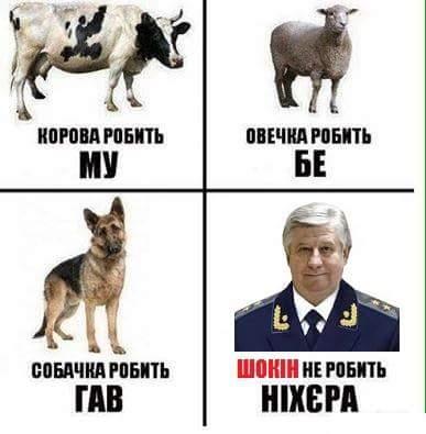 Советую депутатам ходить на заседания Рады и определять судьбу генпрокурора, - Порошенко - Цензор.НЕТ 9518