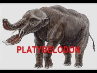 Bizarre Prehistoric Animals Ever Existed!