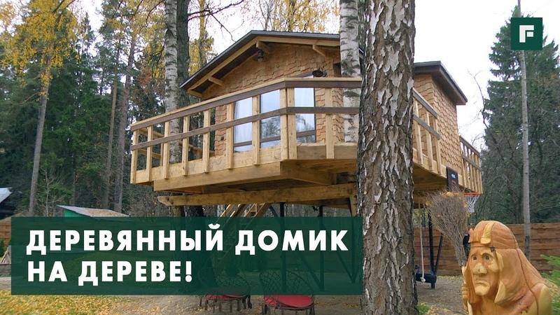 Домик на дереве с детской площадкой: особенности конструктива FORUMHOUSE