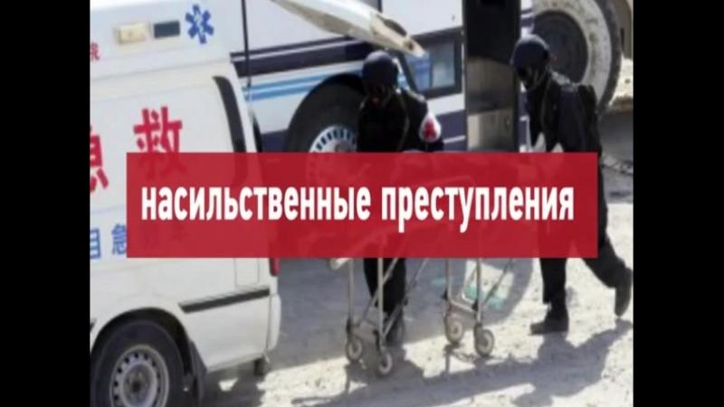 Китайская оккупация России