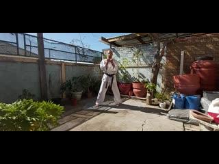 Kyokushin karate home training