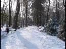 Зимний день 21 ноября 2018 года в парке Революции в г.Ростове-на-Дону. Владислав Махмудов - Live