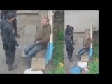 Как ведут себя полицаи, когда их не видят