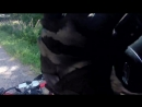 Квадроцикл доездился на встречной полосе