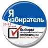 Выборы Совета оппозиции в Ростове-на-Дону