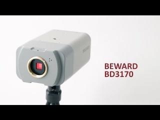 ����� 1.3 �� IP-������ BEWARD BD3170 4xWDR, ���� SONY Exmor
