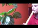 Бамбуковая флейта Сякухати 2 0