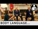 Body Language Government Shutdown Trump Pelosi Schumer