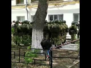 В Самаре, ветеранов, которые по состоянию здоровья не смогли прийти на площадь, поздравили под окнами квартиры.