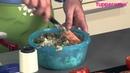 Фаршированные помидоры с рисом в кастрюле « УльтраПро»