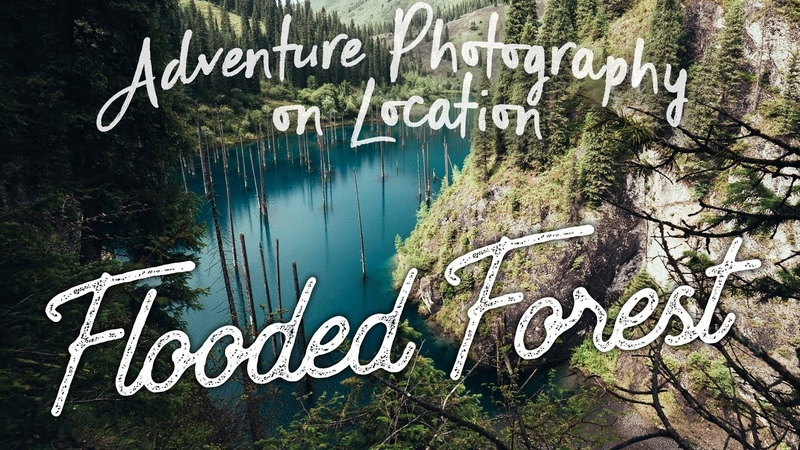 EP23 APOL This is why YOU NEED Polarisers Photographing a Flooded Forest in Kazakhstan