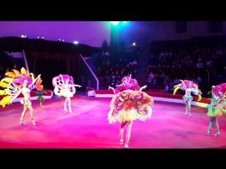 ***КАТЮША*** шоу балет. Бразильский карнавал. Пермский государственный цирк. шоубалеткатюшациркперья бразильскийкарнавалшоу