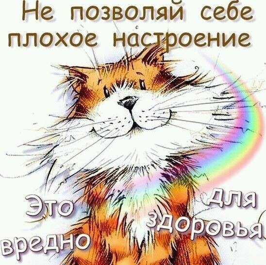 https://pp.userapi.com/c635101/v635101790/147c2/APGrYIpwOkc.jpg