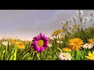 Пчелка Майя (мультфильм, фэнтези, приключения) - с 30 октября 0+