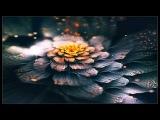 H.U.V.A. Network - Rain Geometries (Solar Fields Remix)