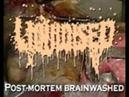 LIQUIDISED Post mortem brainwashed