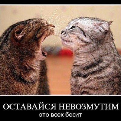 Ирина Глоба, 5 января , id54592278