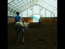 Коля на коне