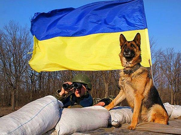 6 российских оккупантов ликвидированы на Донбассе, 32 ранены, - Минобороны Украины - Цензор.НЕТ 4778