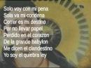 Manu Chao - Clandestino (Lyrics)