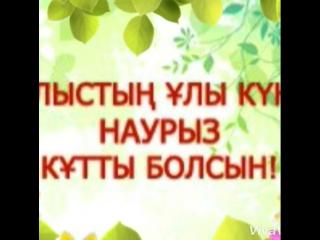 VID_24860221_141413_732.mp4