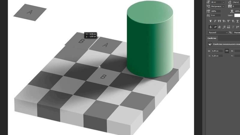 Оптическая иллюзия Шахматная доска