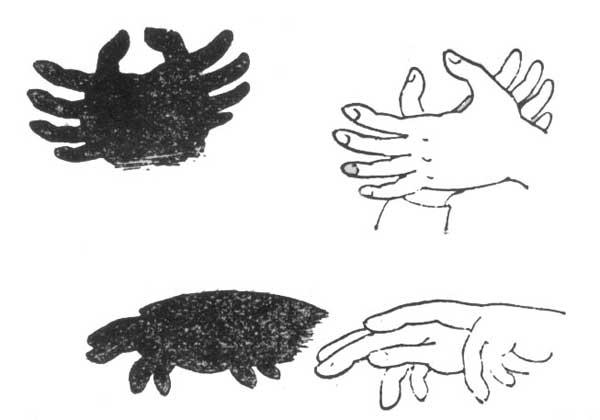 Театр теней рук своими руками