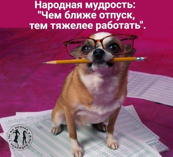 Фото №456260191 со страницы Киры Корсиковой