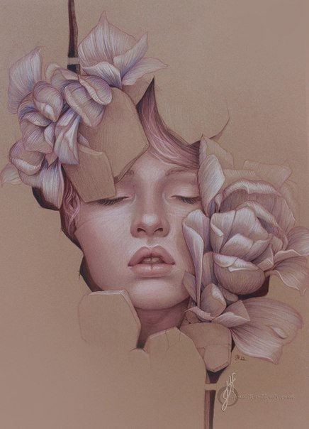 Потрясающие работы Jennifer Healy