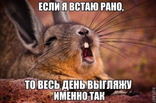 http://cs613521.vk.me/v613521005/1439/z7DUMh80w3s.jpg