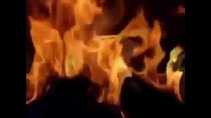 Salar Akili'nin Sesiyle hz Mevlana'nın meşhur 3 Kelebek Şiiri