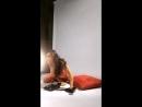 Porno star brazzers Madison Ivy 2 в прямом эфире Live instagram