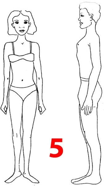 Что можно сказать о тебе по твоему телосложению? - Телосложение выносливого.