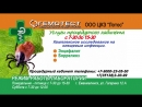 Лотос_процедурный кабинет_клещи_15.05.18 (1)