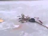 Приколы про зимнюю рыбалку 2014 видео