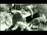 Первые дни Великой Войны глазами немцев