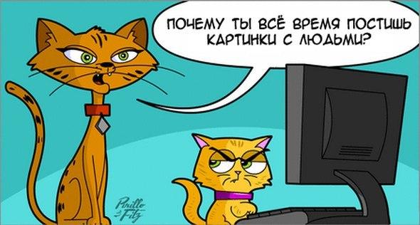 Кот постит картинки