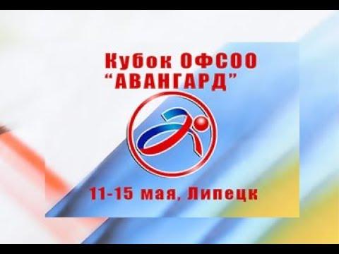 Кубок ОФСОО Авангард по художественной гимнастике г Липецк