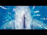 Трейлер фильма Мег Монстр глубины The Meg, 2018
