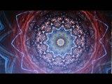 Primus Live at Stanford University Radio 5-3-1989 Palo Alto, CA. Kaleidoscope Treatment