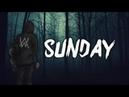 Alan Walker - Sunday (Sk-Hall remix)