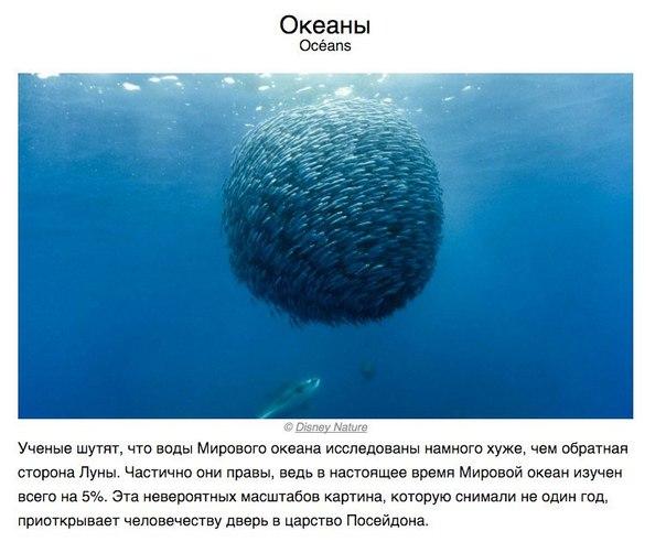 Фото №433882430 со страницы Armen Mikayelyan